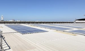 Interview: ABB UAE on why the wait is over for solar power
