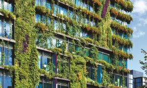Green facades – a case of Sustainability being only skin-deep?